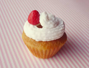 Cupcake by Kyandi-charms
