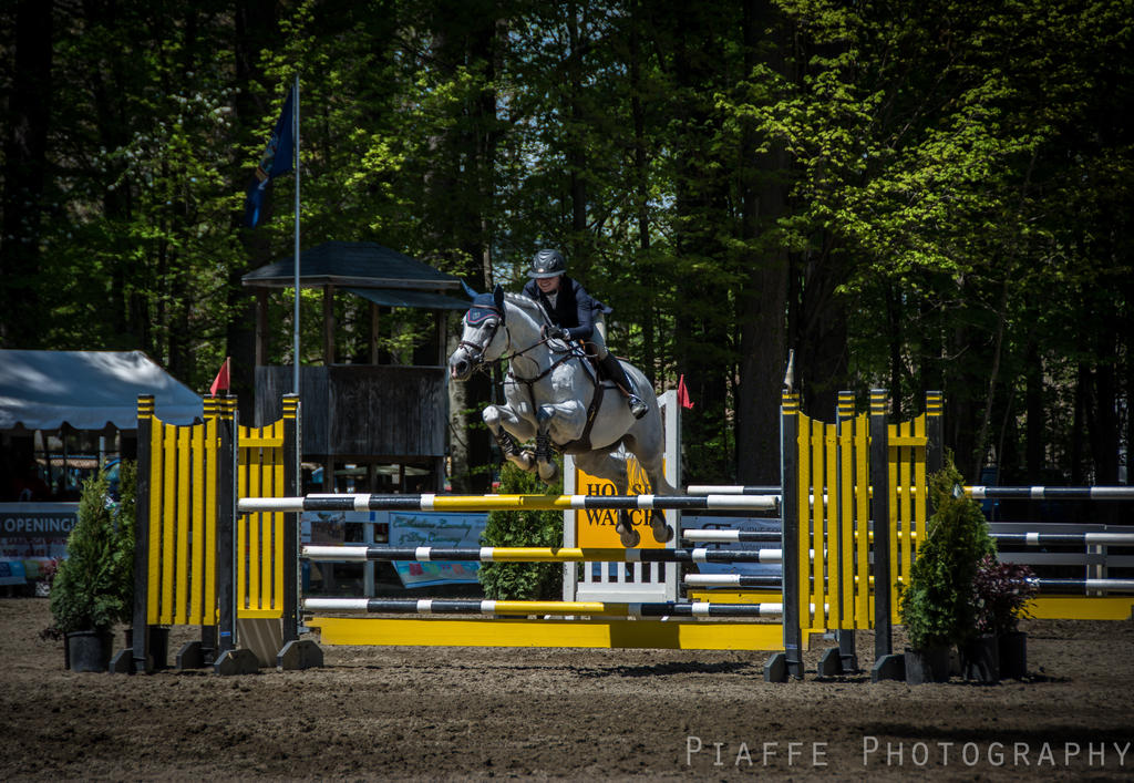 Saratoga Horse Show 1 by EquusPhoto