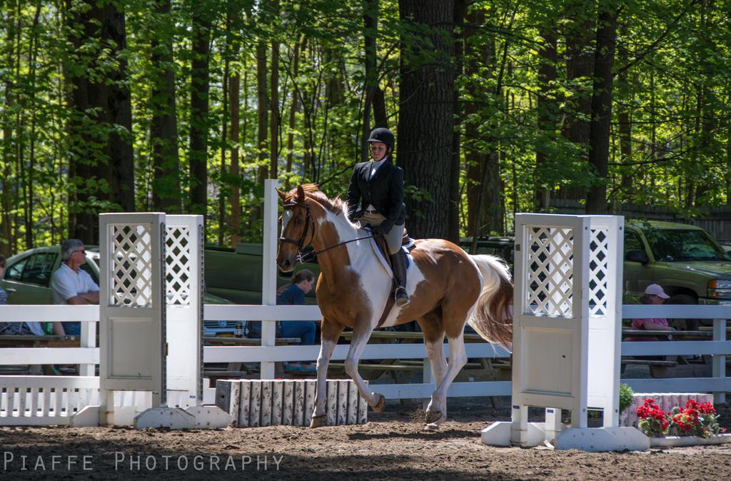 Saratoga Horse Show 19 by EquusPhoto