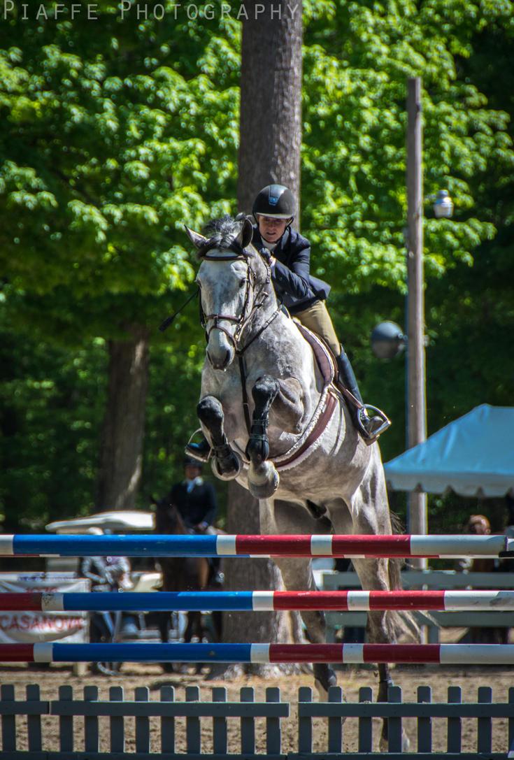 Saratoga Horse Show 20 by EquusPhoto
