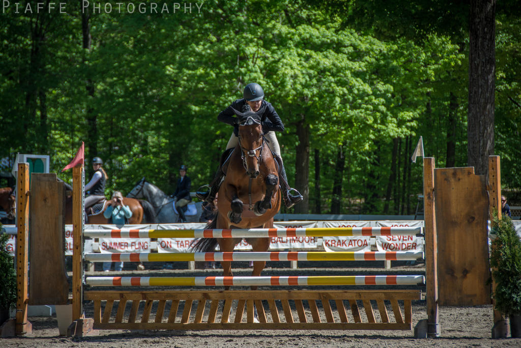 Saratoga Horse Show 22 by EquusPhoto