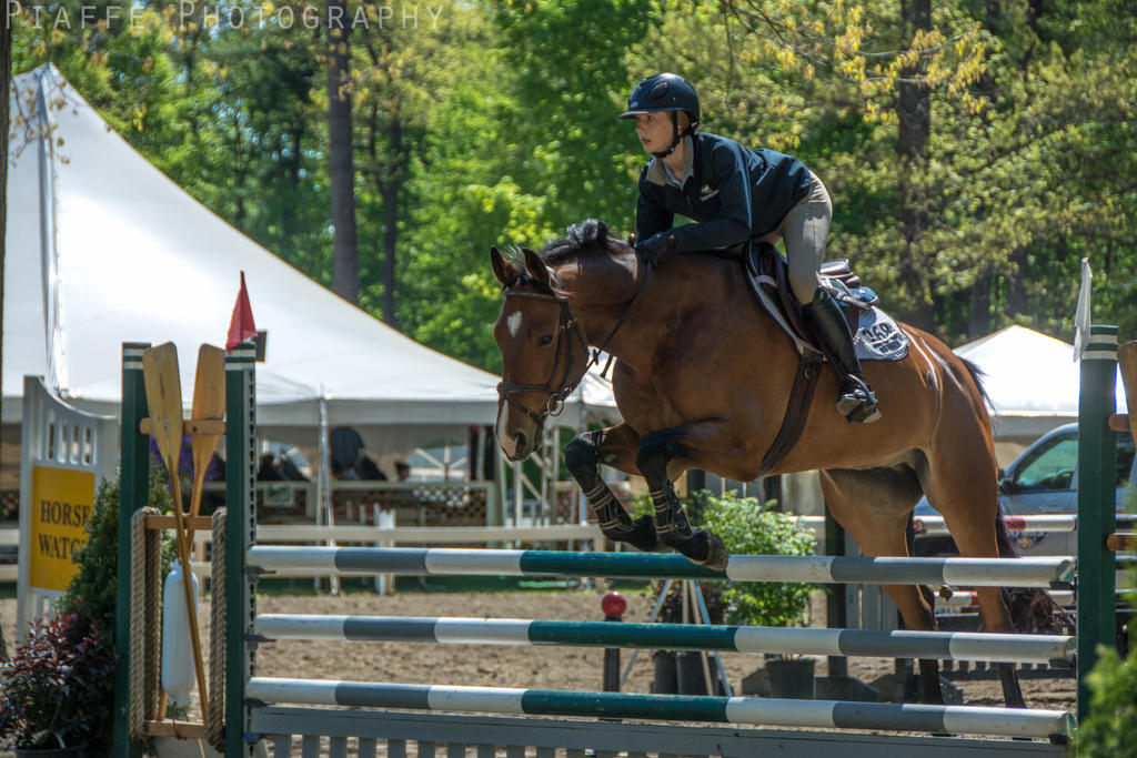 Saratoga Horse Show 23 by EquusPhoto