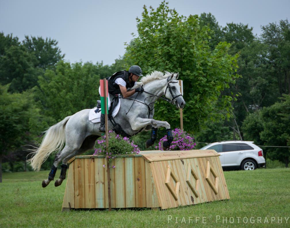HPNJ Intermediate 5 by EquusPhoto