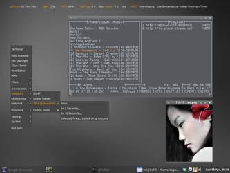 debian openbox screen