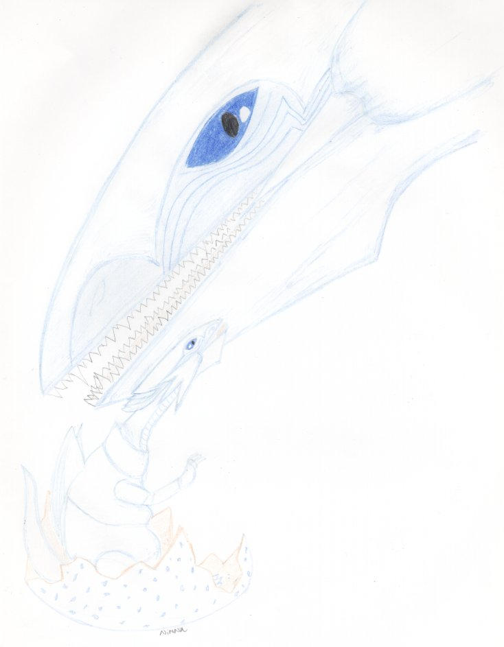Baby blue eyes white dragon by Lhasgalen on deviantART