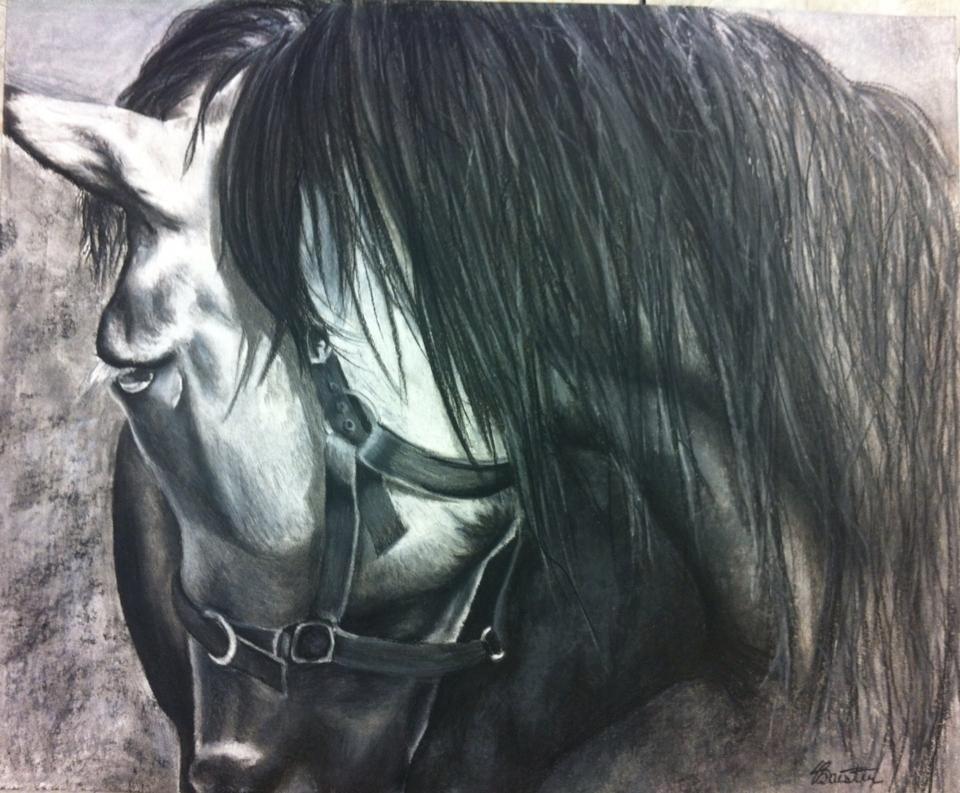 Conte Horse by SydneyJoy