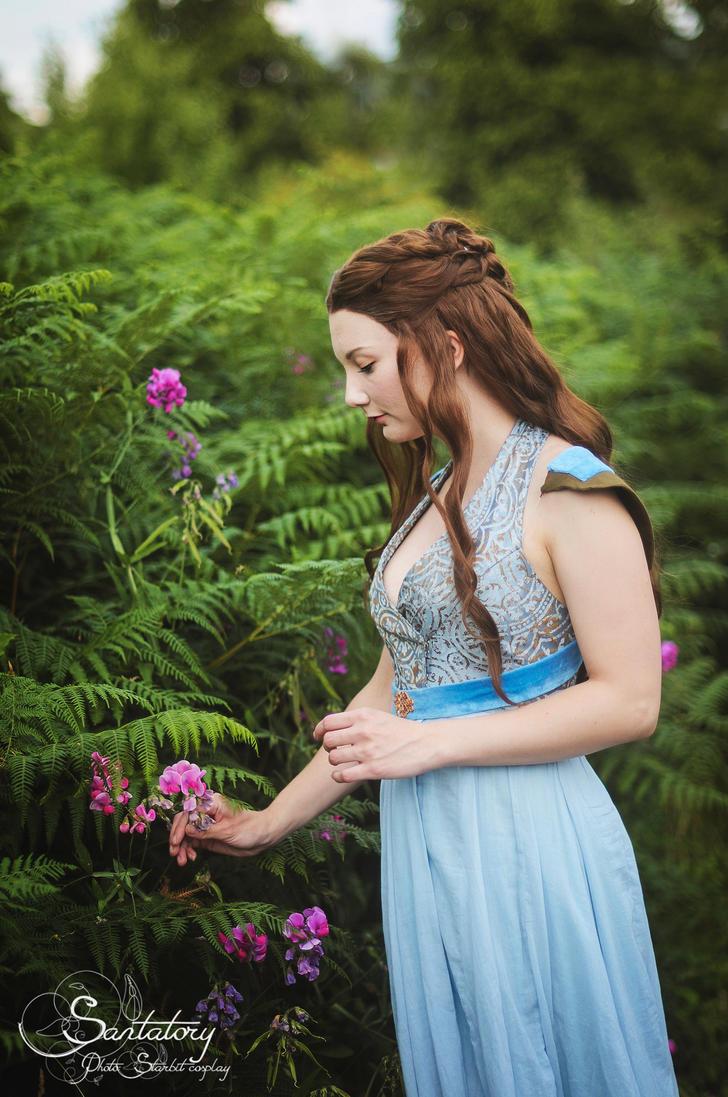 Roses for Sansa by Santatory