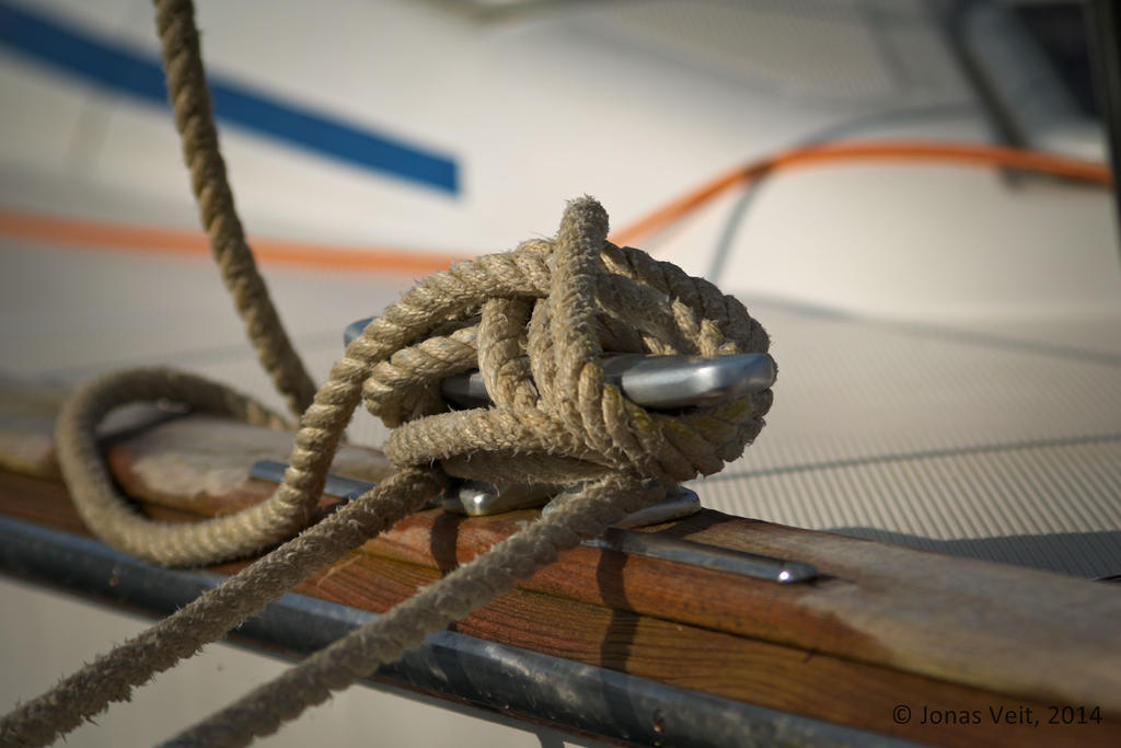 Knot by friedapi
