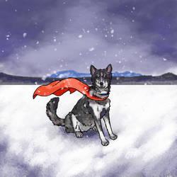 Husky Doodle