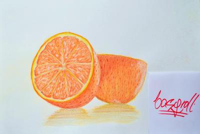 Oranges by basgroll