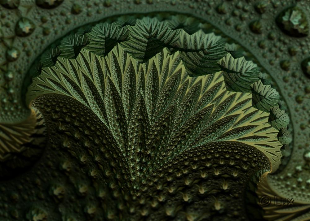 Leafy... by LaxmiJayaraj