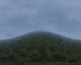 Frag. Woods... by LaxmiJayaraj