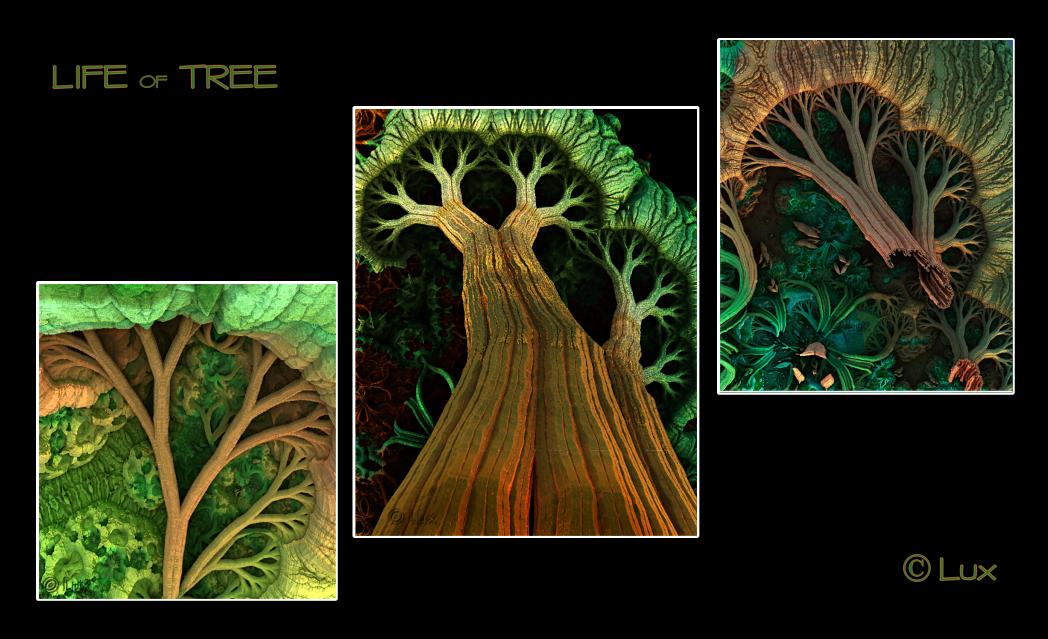Life of Tree by LaxmiJayaraj