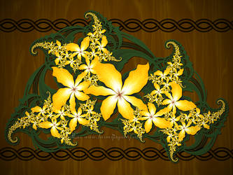 Some Flowers for you all... :) by LaxmiJayaraj