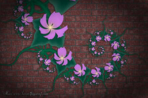Some Flowers... by LaxmiJayaraj