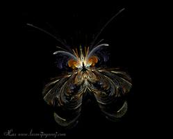 Jwild fly by LaxmiJayaraj