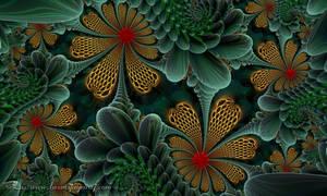 Succulent Garden :) by LaxmiJayaraj