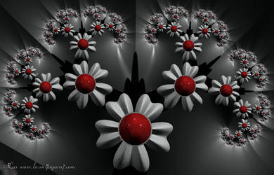 Jux Flowers...