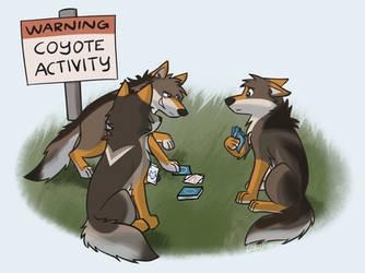 WARNING COYOTE ACTIVITY