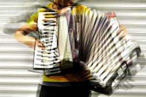 accordion by utopyam