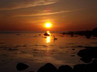 Swedish Sunset no. 4 by Grumzz