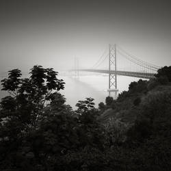 25 de Abril bridge Study I