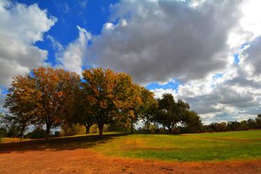 Autumn Sky by BeverlyMichelle