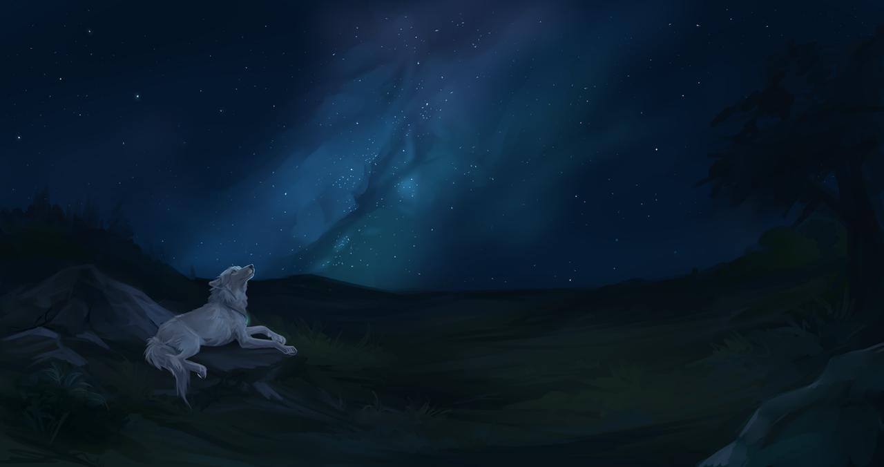 Star Gazer by Innali