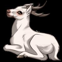 Albino Deer by Innali