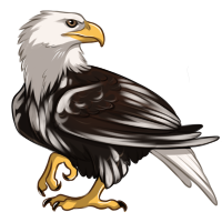 Piebald Eagle by Innali