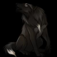 [Image: black_wolf_by_innali-d826eum.png]