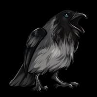 Piebald Raven by Innali