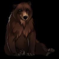 Bear by Innali