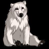 Polar Bear by Innali