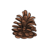 Pinecone by Innali