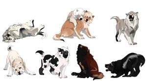 Tokota Pups YCH