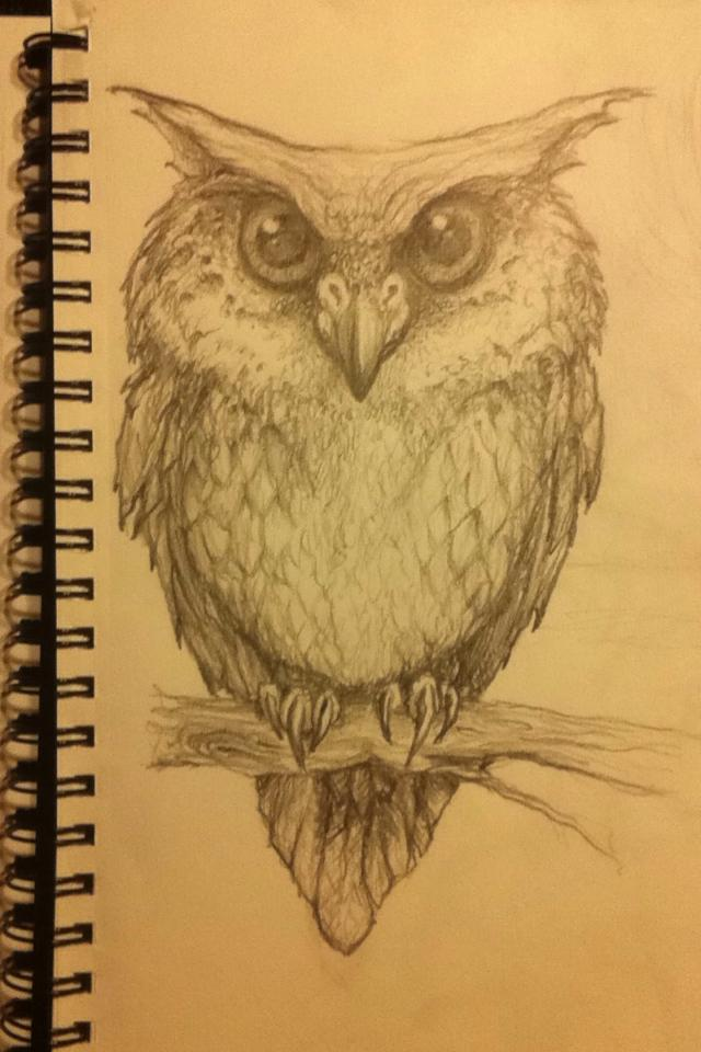 Owl1 by stablefly