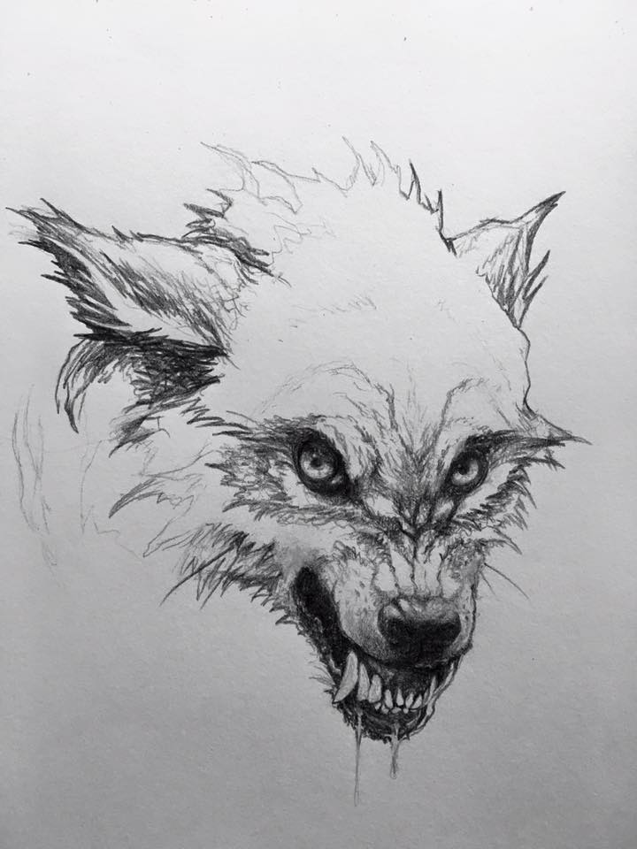 Wolves by stablefly