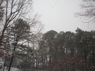 1-2015 Snow-2