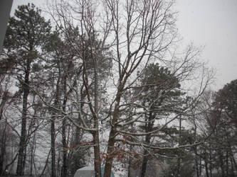 1-2015 Snow-3