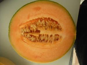 Cantaloup-4