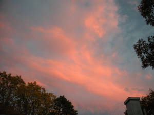 Cotton Candy Clouds 1284