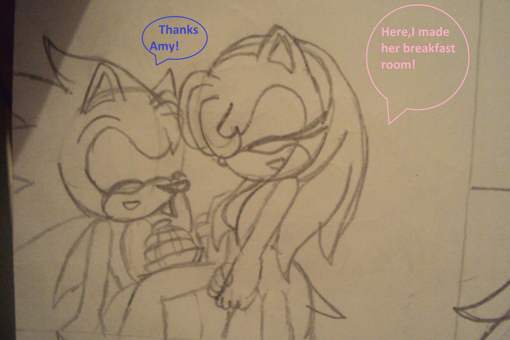 Title: Sonic love story. Rated M for later chapters. Summary: Sonic, Shadow, Amy, Tails, Knuckles, Rouge, Cream, Caliburn and My OC's Night The Hedgehog and .