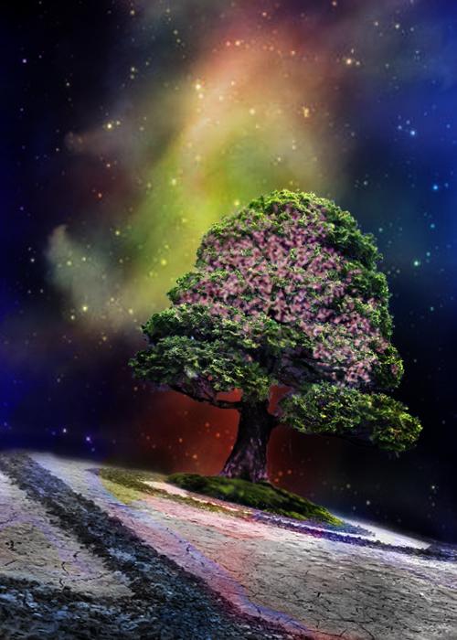 Colorful life by PinkSunshine666