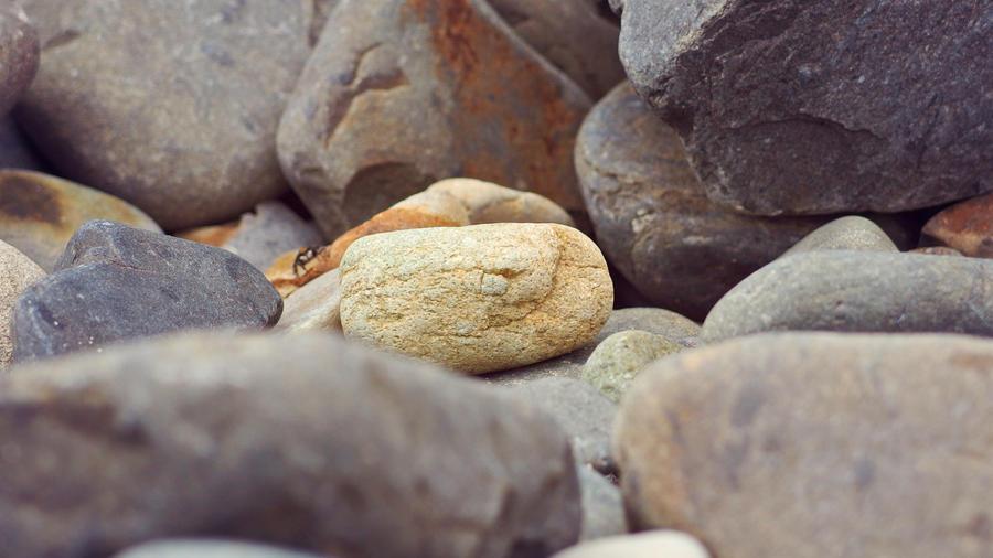 Ocean Pebble by duckfarm