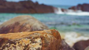 Coastal Rock Stream