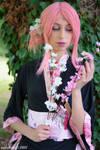 Sakura kimono -5-