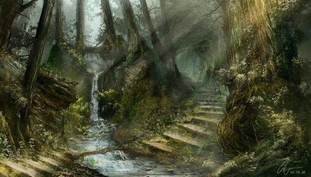 The Undisturbed Forest