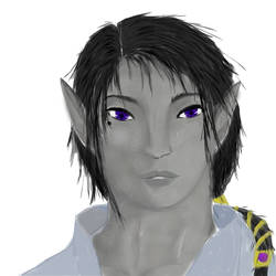 Half-Shaakt (human/dark elf) -inspi' Yuimen- clean