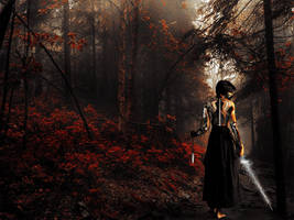 A Warriors Journey by KnightFlyte96